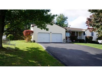 Apalachin Single Family Home For Sale: 8 Megan Drive