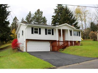 Endicott NY Single Family Home For Sale: $149,900