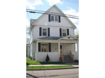 Binghamton Single Family Home For Sale: 105 Schubert