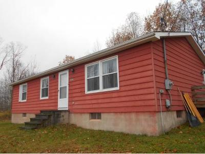 Apalachin Single Family Home For Sale: 1938 Chestnut Ridge Road