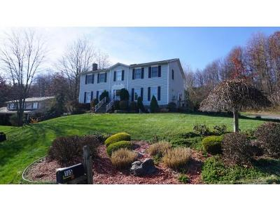 Endicott NY Single Family Home For Sale: $199,900