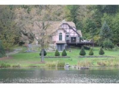 Vestal Single Family Home For Sale: 350 Grippen Hill Road