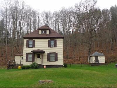 Vestal Single Family Home For Sale: 389 Powderhouse