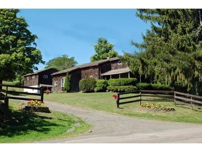 Harpursville NY Single Family Home For Sale: $319,900