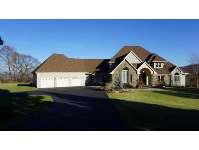 Vestal NY Single Family Home For Sale: $595,000