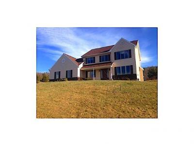 Binghamton NY Single Family Home For Sale: $250,000