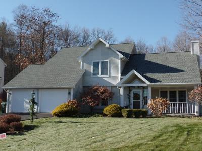 Binghamton Single Family Home For Sale: 46 Country Knoll