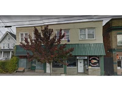 Binghamton Multi Family Home For Sale: 186 Clinton Street