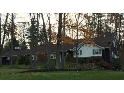Binghamton Single Family Home For Sale: 3144 Hickory Lane