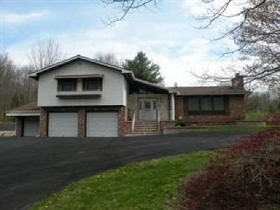 Binghamton Single Family Home For Sale: 1922 Airport Road