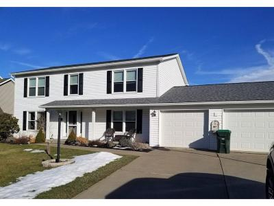 Binghamton Single Family Home For Sale: 29 Country Knoll Dr