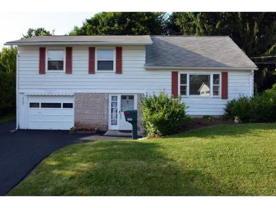 Endwell NY Single Family Home For Sale: $132,900