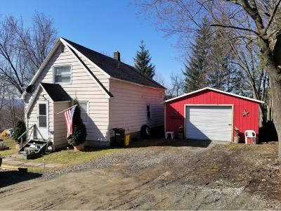 Binghamton Single Family Home For Sale: 21 Louisa Street