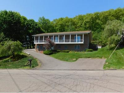 Broome County, Cayuga County, Chenango County, Cortland County, Delaware County, Tioga County, Tompkins County Single Family Home For Sale: 87 Skye Island