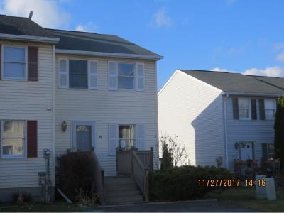 Binghamton Single Family Home For Sale: 23 Gregory Lane