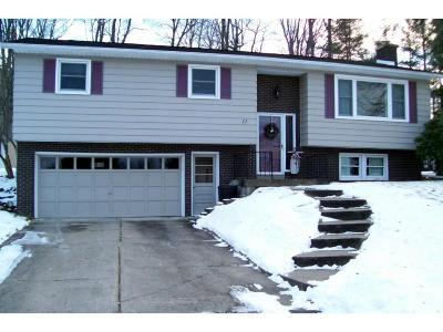 Apalachin Single Family Home For Sale: 11 Dorothy