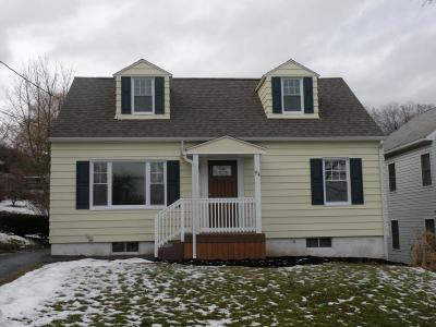 Binghamton Single Family Home For Sale: 64 Terrace Drive
