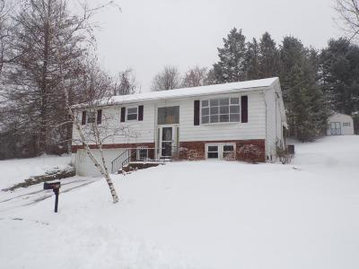 Apalachin Single Family Home For Sale: 24 Crescent