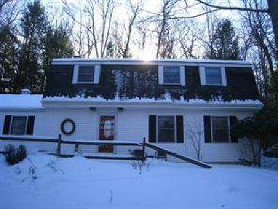 Binghamton Single Family Home For Sale: 3328 Cynthia Drive