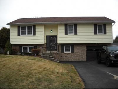 Johnson City NY Single Family Home For Sale: $149,999