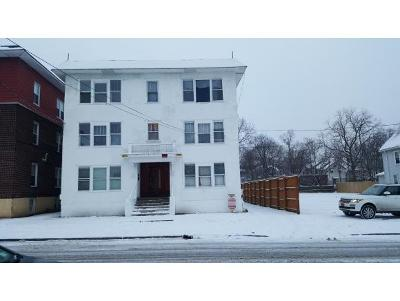 Binghamton Multi Family Home For Sale: 30 Edwards Street