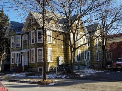 Binghamton Multi Family Home For Sale: 80 Walnut
