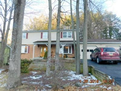 Vestal NY Single Family Home For Sale: $230,000