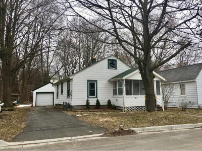 Endwell Single Family Home For Sale: 38 Brookside Avenue