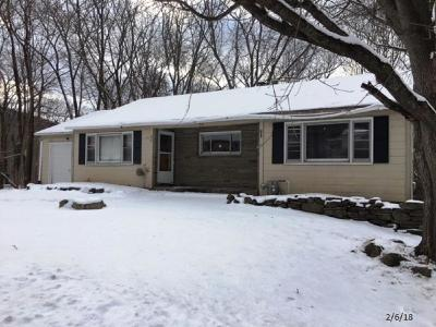 Apalachin Single Family Home For Sale: 50 Brookside Ave