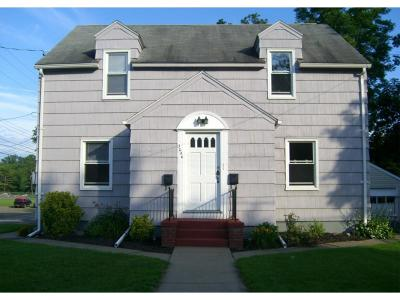 Endwell Multi Family Home For Sale: 3226 Metz Ave
