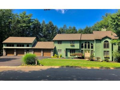 Vestal NY Single Family Home For Sale: $569,000