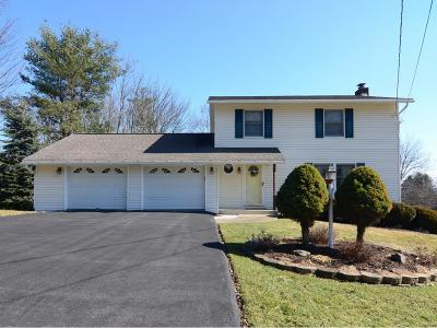 Endicott NY Single Family Home For Sale: $174,900