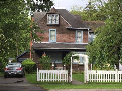 Owego Single Family Home For Sale: 18 Academy Street