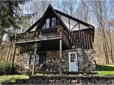 Broome County, Cayuga County, Chenango County, Cortland County, Delaware County, Tioga County, Tompkins County Single Family Home For Sale: 2205 Nys Route 12