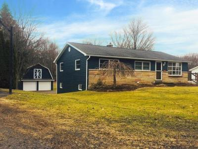 Apalachin Single Family Home For Sale: 2605 Marshland Drive