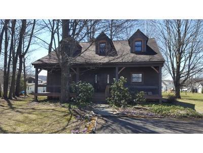 Newark Valley NY Single Family Home For Sale: $244,900