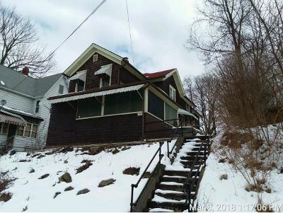Binghamton Single Family Home For Sale: 162 Murray