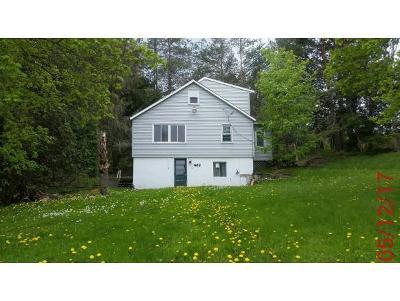 Binghamton Single Family Home For Sale: 823 Castle Creek Rd