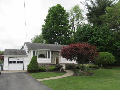 Apalachin NY Single Family Home For Sale: $144,000