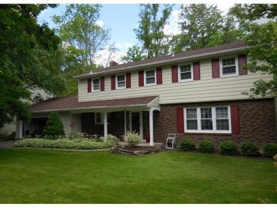 Vestal NY Single Family Home For Sale: $285,000