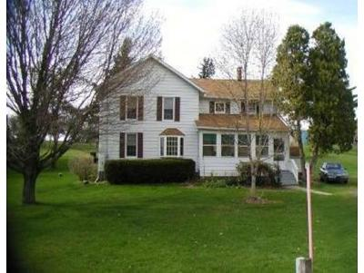 Broome County, Cayuga County, Chenango County, Cortland County, Delaware County, Tioga County, Tompkins County Single Family Home For Sale: 379 Wylie Horton Road