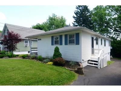 Endwell Single Family Home For Sale: 3006 Robins Street
