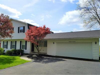 Endwell Single Family Home For Sale: 2922 Holly Lane