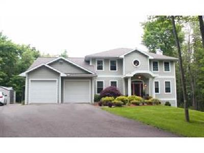 Vestal NY Single Family Home For Sale: $550,000
