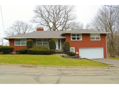 Endwell Single Family Home For Sale: 3756 Hoover Ave