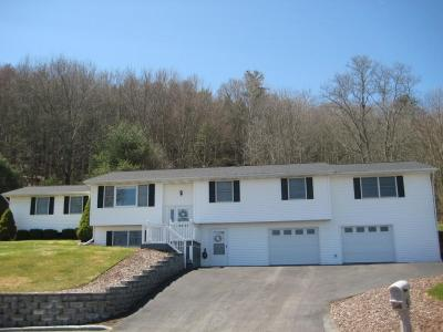 Binghamton Single Family Home For Sale: 5 Donna Ct