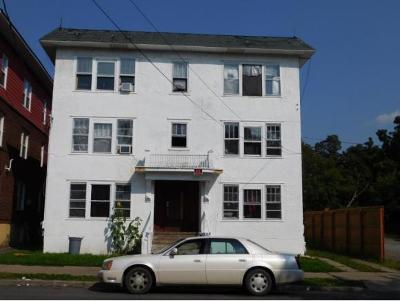 Binghamton Multi Family Home For Sale: 30 Edwards Street