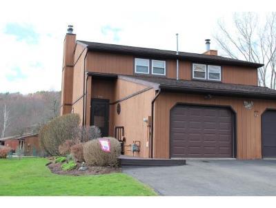 Endwell Single Family Home For Sale: 919 White Birch Lane