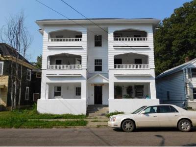 Binghamton Multi Family Home For Sale: 46 North Street