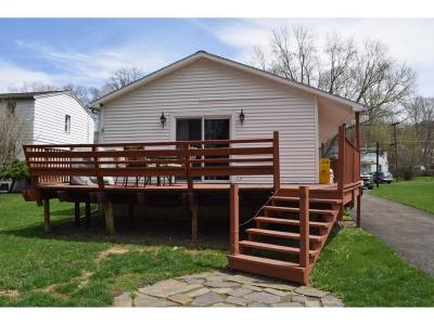 Vestal Single Family Home For Sale: 816 Circle Drive